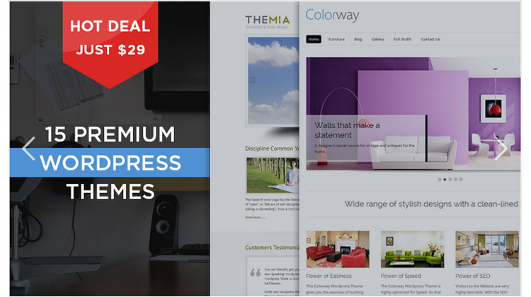 15 Premium WordPress Themes For Only $29
